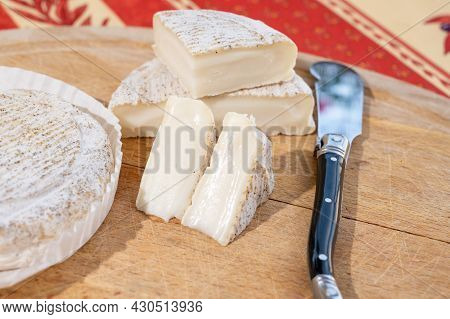 Taste Of Provence, Small Round Cheese Tome De Provence Made From Goat Milk In Banon, Alpes-de-haute-