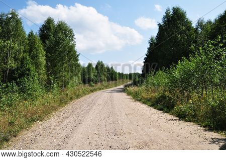 Dirt Road To The Forest. Panorama Of A Rural Road. Summer Day In The Forest.