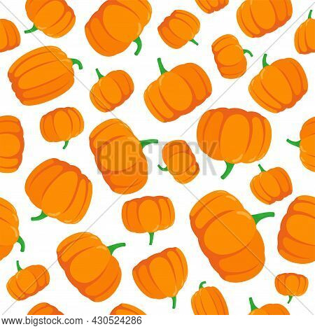 Seamless Pattern With Hand Drawn Pumpkins On White Background. Vector Eps Illustration