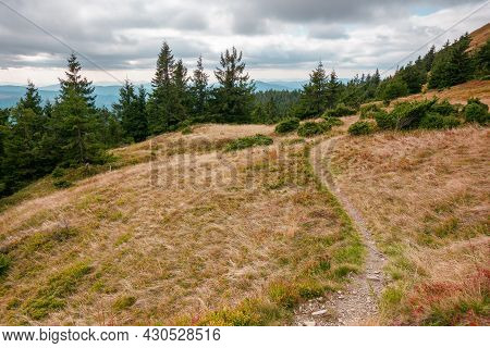 Trail Through Mountain Hill. Landscape With Trees On The Meadow With Yellow Grass. Ridge In The Dist