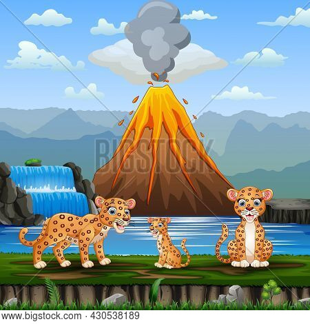 Scene With Leopard Family And Volcano Erupt Illustration
