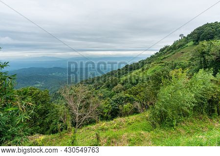 Beautiful Rain Forest Mountain, Doi Suthep, Chiang Mai, Thailand.