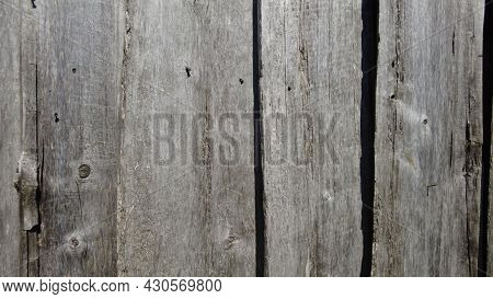 Natural Wood Texture Vintage Background. Old Wall Grey, Wooden Boards. Grunge Surface, Timber Backdr