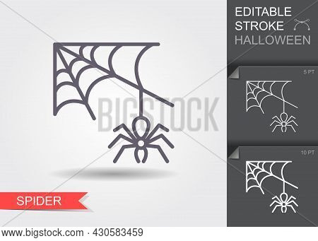Spider Web And Spider Line Icon With Editable Stroke With Shadow