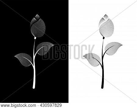 A Flower On A Contrasting Background. Black And White Background In Two Versions. Vector