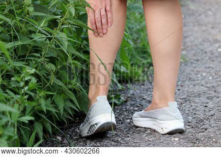 Girl With Bare Legs Holding On To The Shin Standing On A Path Near Tall Stinging Nettle. Leisure In