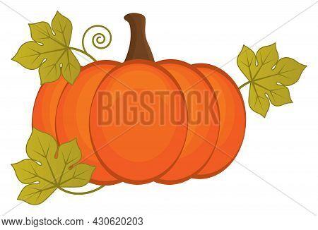 Orange Pumpkin With Leaves. Vector Halloween Pumpkin. Pumpkin Vector Illustration