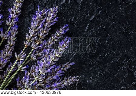 Lavender Background With A Bouquet Of Lavandula, Shot From The Top On A Black Background With Copy S