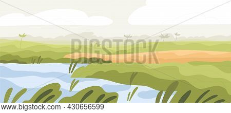 Agriculture Rice Field Landscape. Asian Farm Land With Crop And Water. Indian Farmland In Summer. Pl