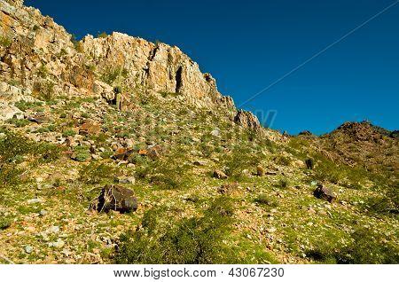 Piestewa / Squaw Peak