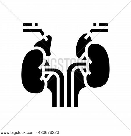 Adrenals Endocrinology Glyph Icon Vector. Adrenals Endocrinology Sign. Isolated Contour Symbol Black