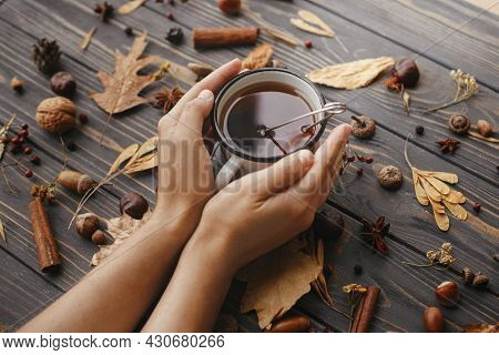 Hands Holding Warm Cup Of Tea On Background Of Autumn Leaves, Berries, Nuts, Anise, Acorns, Pine Con