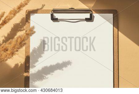 Mock Up Horizontal Blank Sheep Paper, Shadow Overlay Plant On Beige Background. Minimal Business Bra