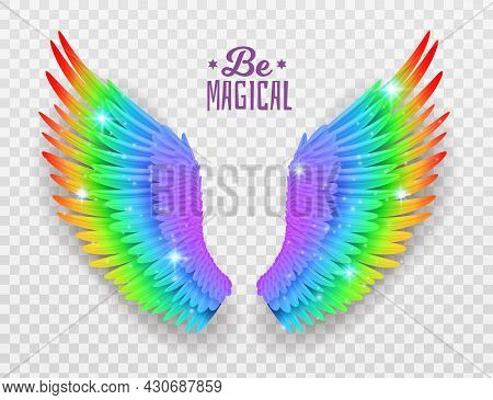 Rainbow Wings. Realistic Bright Freedom Symbol, Symmetric Shapes, Pride Color Feathers, Beautiful Ma