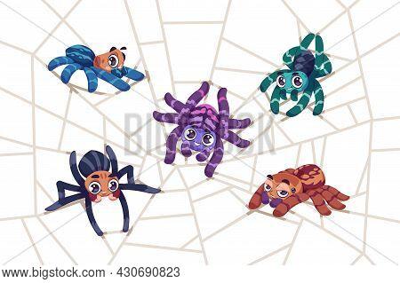 Spider On Web. Cartoon Tarantula Characters Sitting On Net. Funny Insects Weaving Cobweb. Arachnid M