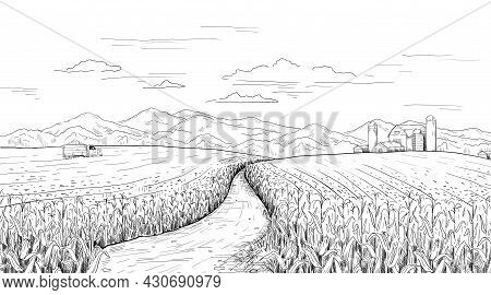 Hand Drawn Field Landscape. Corn Farm Sketch With Rural House And Silos. Pencil Drawing Of Agricultu
