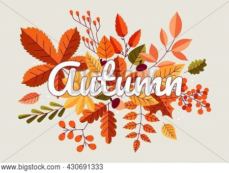 Autumn Background. Fall Composition With Yellow Orange And Red Forest Leaves, Maple Oak And Chestnut