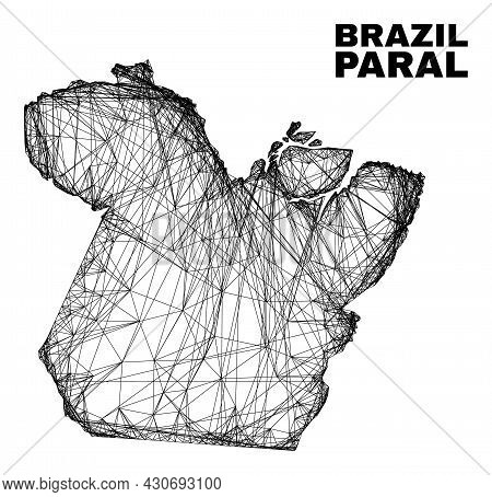 Carcass Irregular Mesh Paral State Map. Abstract Lines Are Combined Into Paral State Map. Wire Carca