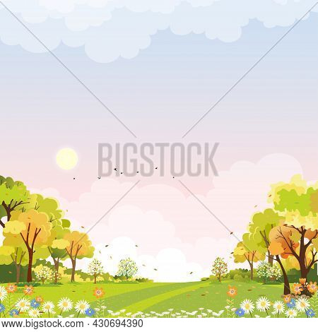 Spring Landscape Wonderland Forest With Grass Land In Morning,vector Summer Time In The Park,green P