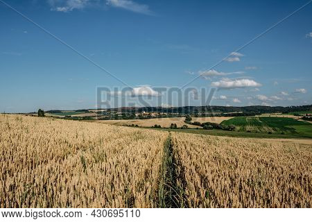 Idyllic Summer Landscape With Grain Field,meadows And Typical Czech Small Village In Background.gold