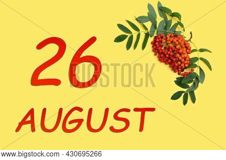 26th Day Of August. Rowan Branch With Red And Orange Berries And Green Leaves And Date Of 26 August