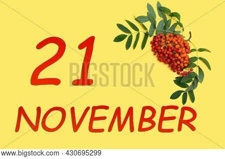 21st Day Of November. Rowan Branch With Red And Orange Berries And Green Leaves And Date Of 21 Novem