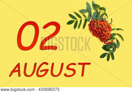 2nd Day Of August. Rowan Branch With Red And Orange Berries And Green Leaves And Date Of 2 August On