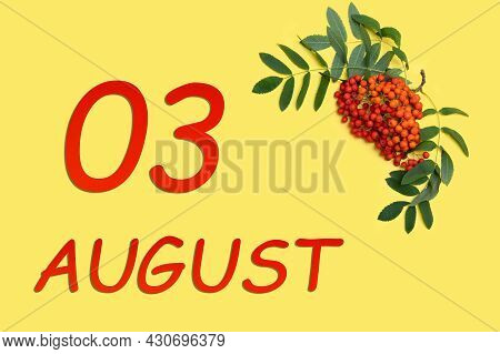 3rd Day Of August. Rowan Branch With Red And Orange Berries And Green Leaves And Date Of 3 August On
