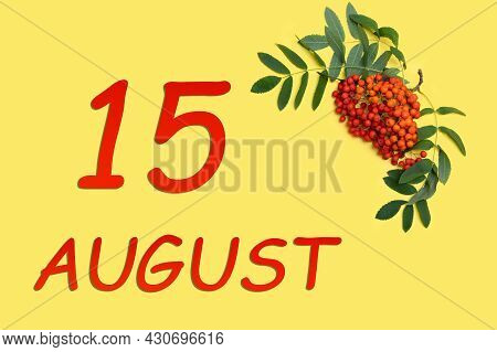 15th Day Of August. Rowan Branch With Red And Orange Berries And Green Leaves And Date Of 15 August