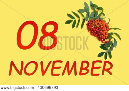 8th Day Of November. Rowan Branch With Red And Orange Berries And Green Leaves And Date Of 8 Novembe