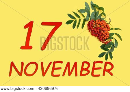 17th Day Of November. Rowan Branch With Red And Orange Berries And Green Leaves And Date Of 17 Novem