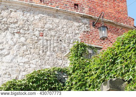 Brick Wall With Lantern And Wall Overgrown By Thick Ivy Leaves In The City, City Architecture