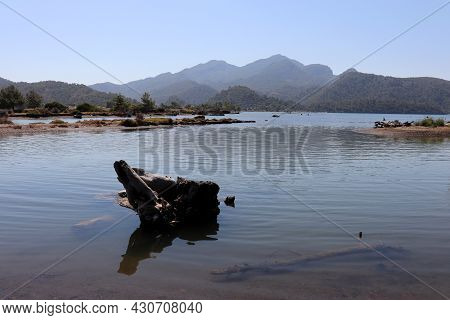 View From The Wild Beach With Fallen Trunk To The Calm Sea And Mountain Islands In Mist. Mouth Of Th