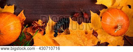 Autumn Background. Frame From Ripe Pumpkins And Fallen Leaves On Wooden Boards. Harvest And Thanksgi