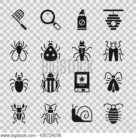 Set Larva Insect, Clothes Moth, Beetle Bug, Spray Against Insects, Ladybug, Insect Fly, Butterfly Ne