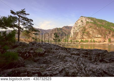 Wavy Rocks On The Bank Of A Mountain River. Pine Trees On The Rocks, High Mountain Across The River,