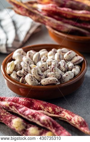 Cranberry beans. Borlotti beans in bowl. Beans pods.
