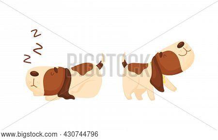 Cute Funny Beagle Dog Sleeping And Walking Set. Cute Adorable Pet Animal Cartoon Vector Illustration