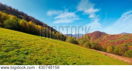 Autumnal Landscape In Carpathian Mountains. Trees In Colorful Foliage On A Grassy Hills Rolling In T