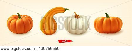Pumpkin Set, Great Design For Any Purposes. Different Pumpkins Isolated. 3d Realistic Vector Illustr