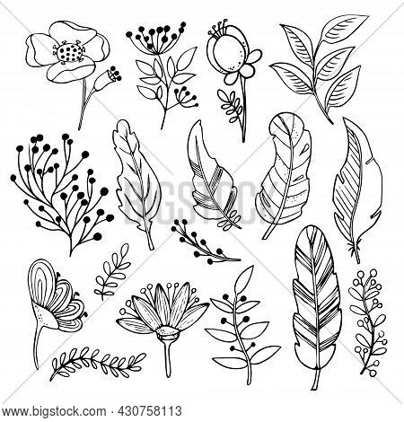 Vector Botanical Set. Spring And Summer Herbs And Flowers. Hand Drawn Wildflowers And Branches With