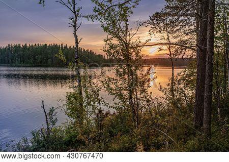 Beautiful Decline On The Wood Lake. Sunset Background.