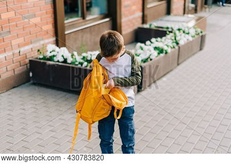 Back To School. Cute Child Packing Backpack, Holding Notepad And Training Books Going To School. Boy