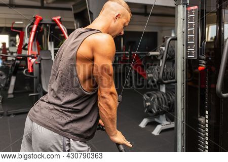 Muscular Man Working Out In Gym Doing Exercises,exercise For Triceps In The Gym. Strong Male Naked T