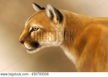 Vector Puma On Brown Vintage Background. Realistic Cougar Head Illustration In Retro Style. Mountain