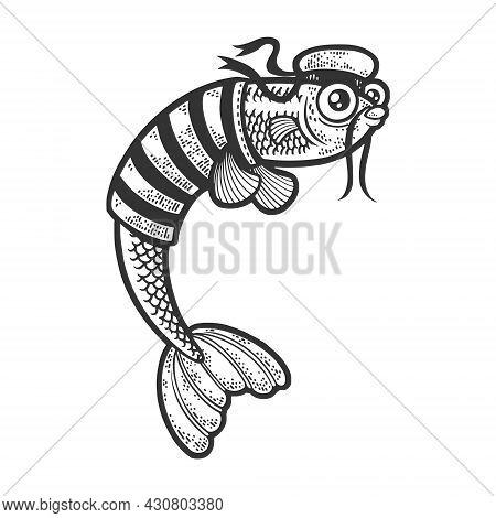 Cartoon Sailor Fish Sketch Engraving Vector Illustration. T-shirt Apparel Print Design. Scratch Boar