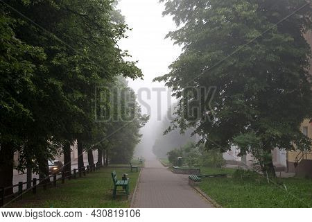 A Foggy Gray Tiled Sidewalk With Curbs And Trash Cans Surrounded By Trees With Thick Green Foliage,