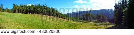 Wide Angle Panoramic Image Of Mountain Meadow. Forest Hills In The Background. Mountainous Landscape