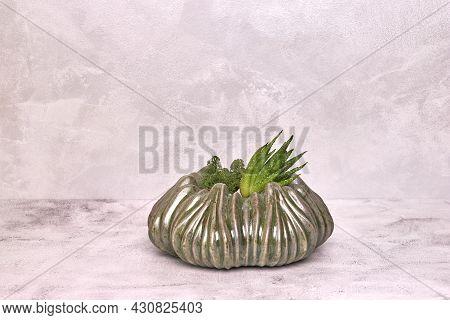 Decorative Ceramic Vase. Stylish Interior Home Design