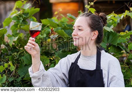 Portrait Of Young Brunette Woman Winemaker Checking The Red Wine Quality On The Vineyard At Sunset.